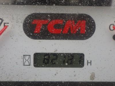 4384.TCM FHD30T3
